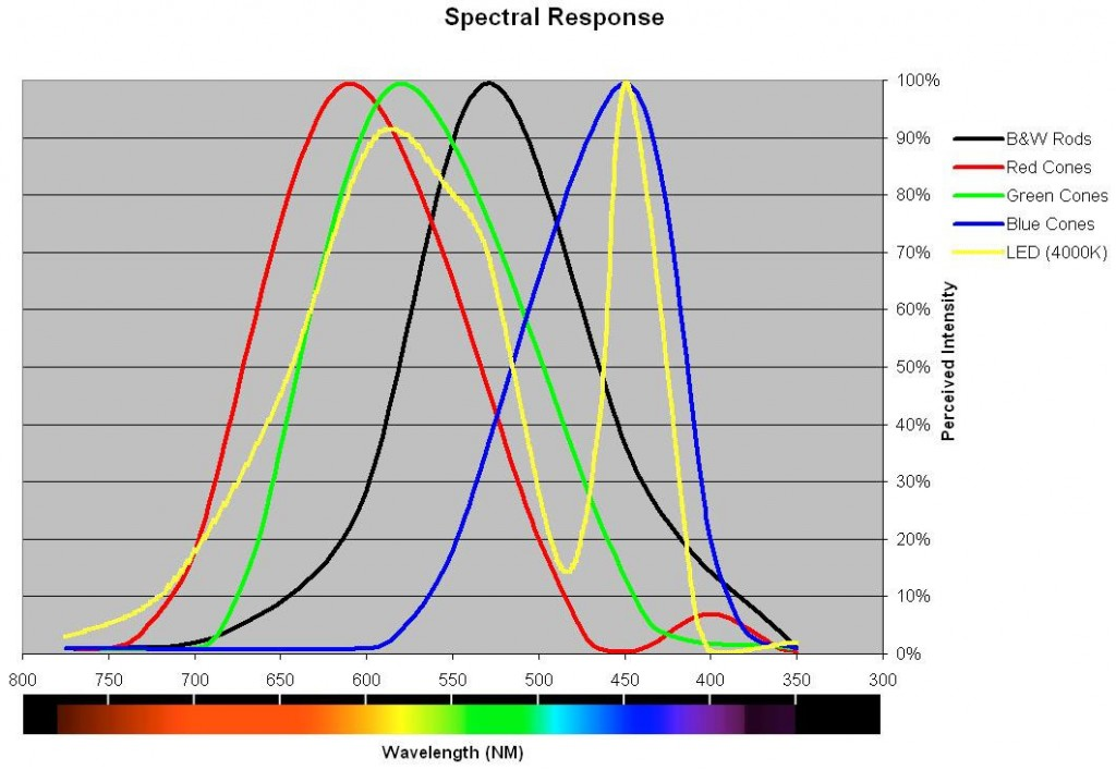 spectral response curves for color