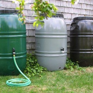 Assortment of rain barrels sold during Medford's rain barrel sales in the spring. You can see the connectors between them to chain them together.